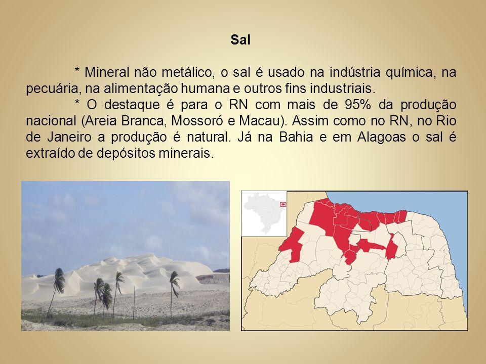 Sal* Mineral não metálico, o sal é usado na indústria química, na pecuária, na alimentação humana e outros fins industriais.