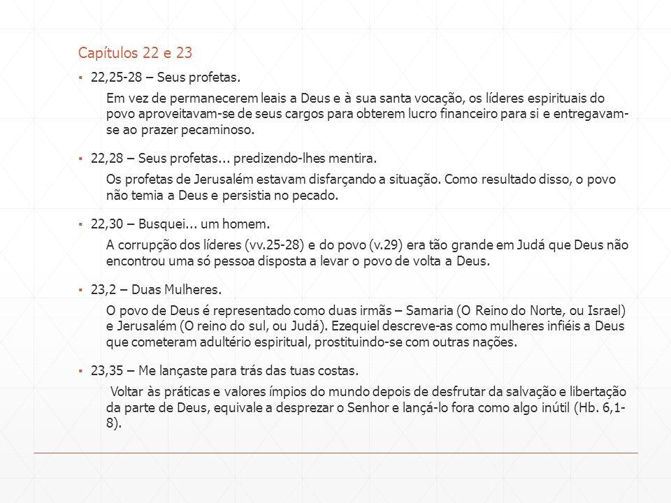 Capítulos 22 e 23 22,25-28 – Seus profetas.