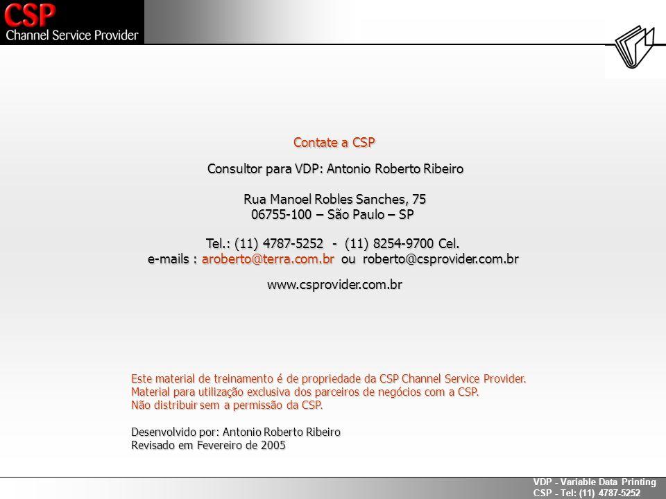 Consultor para VDP: Antonio Roberto Ribeiro