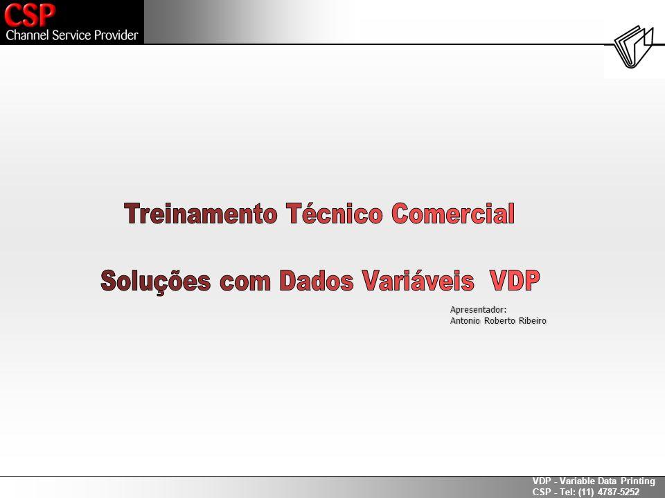 Treinamento Técnico Comercial Soluções com Dados Variáveis VDP