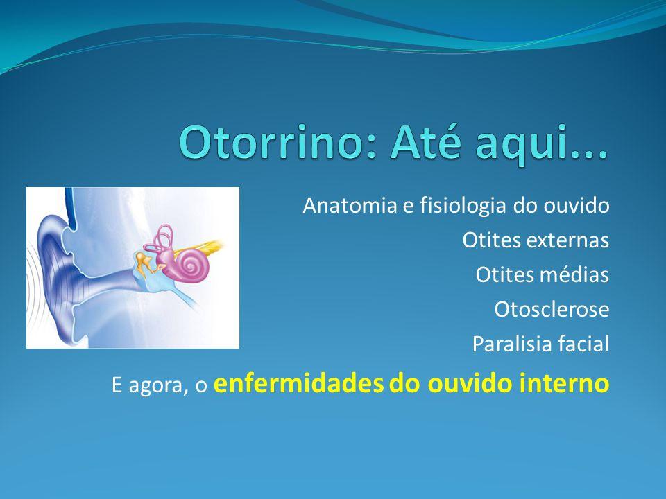 Otorrino: Até aqui... Anatomia e fisiologia do ouvido Otites externas