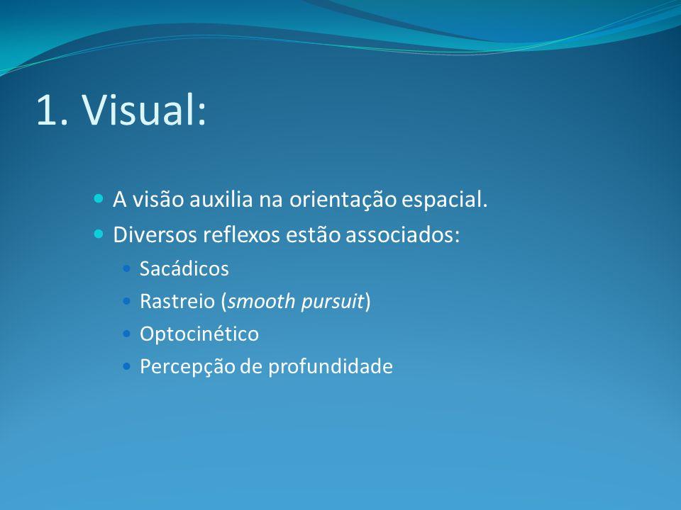 1. Visual: A visão auxilia na orientação espacial.