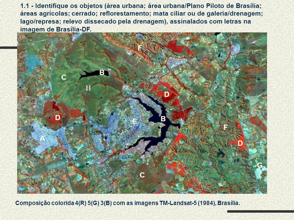 1.1 - Identifique os objetos (área urbana; área urbana/Plano Piloto de Brasília; áreas agrícolas; cerrado; reflorestamento; mata ciliar ou de galeria/drenagem; lago/represa; relevo dissecado pela drenagem), assinalados com letras na imagem de Brasília-DF.