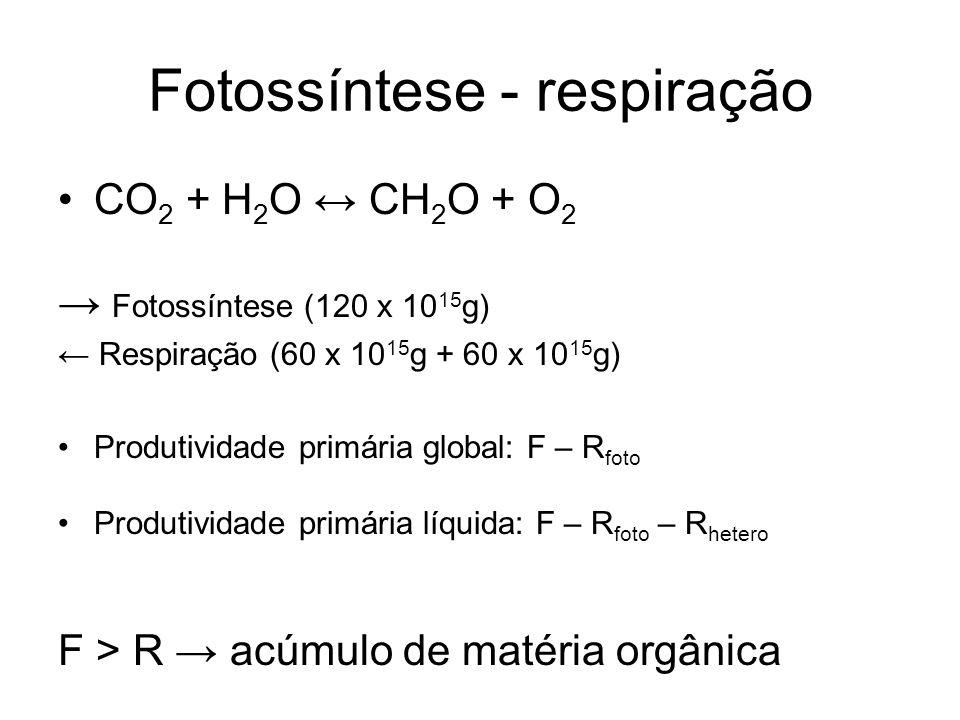 Fotossíntese - respiração