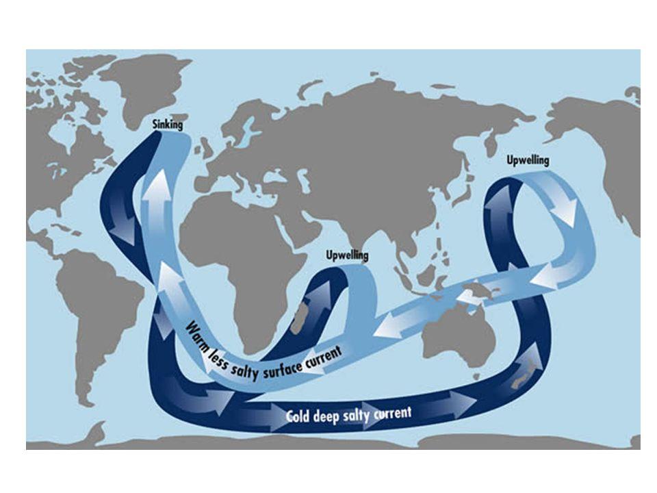 O mesmo conveyor belt que distribui calor das regiões equatoriais também redistribui carbono que foi lançado pelos rios nos oceanos já que as maiores descargas de HCO3 encontram-se nas regiões equatoriais.