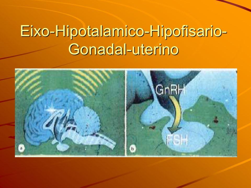 Eixo-Hipotalamico-Hipofisario-Gonadal-uterino