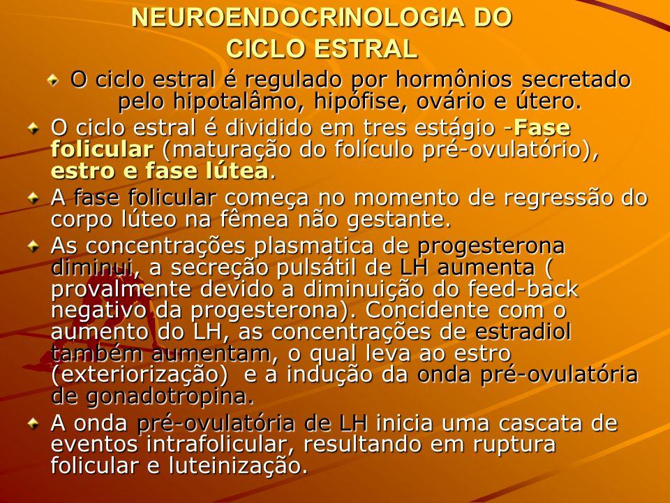 NEUROENDOCRINOLOGIA DO CICLO ESTRAL
