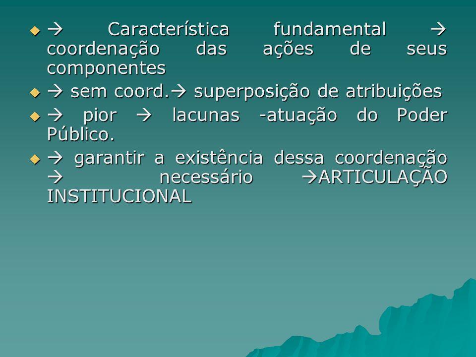  Característica fundamental  coordenação das ações de seus componentes