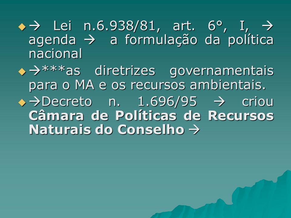  Lei n.6.938/81, art. 6°, I,  agenda  a formulação da política nacional