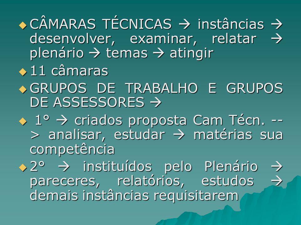 CÂMARAS TÉCNICAS  instâncias  desenvolver, examinar, relatar  plenário  temas  atingir
