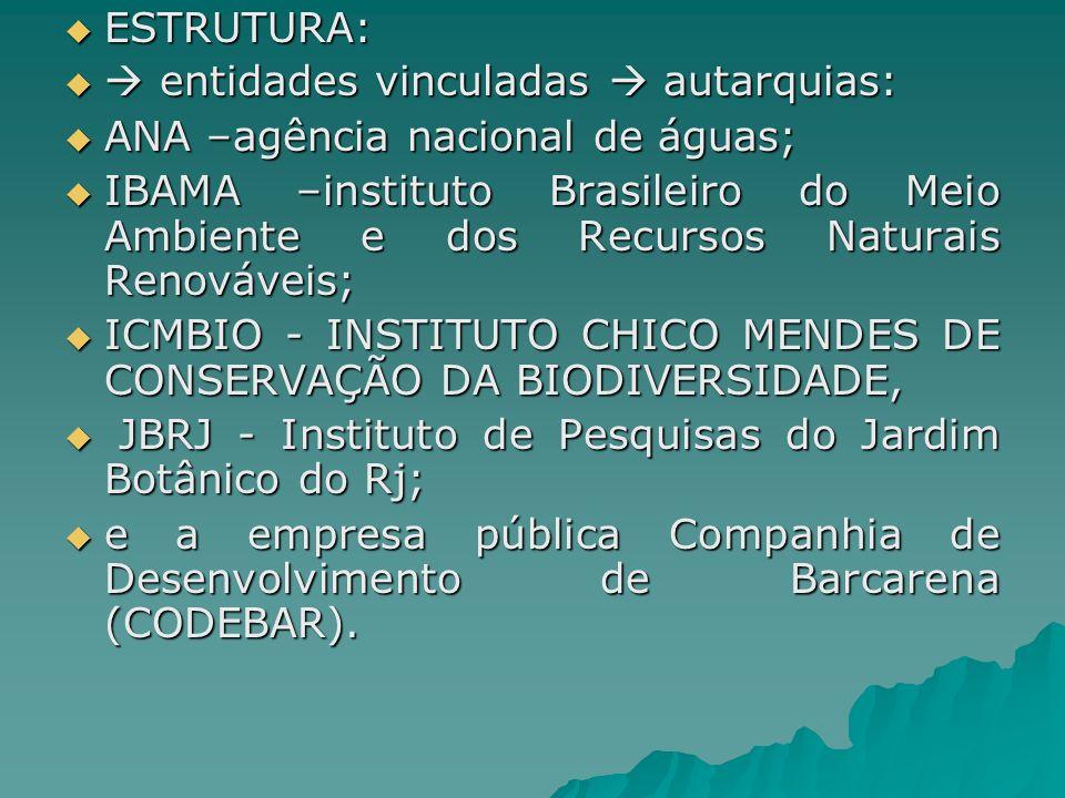 ESTRUTURA: entidades vinculadas  autarquias: ANA –agência nacional de águas;