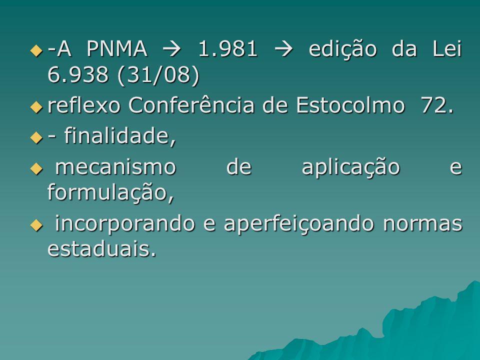 -A PNMA  1.981  edição da Lei 6.938 (31/08)