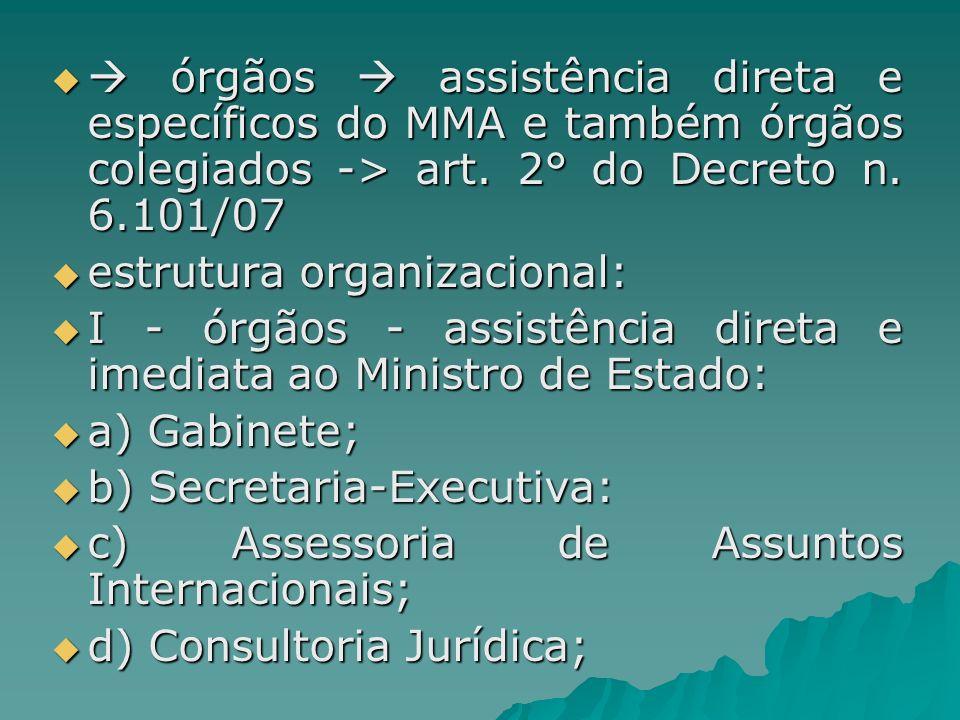  órgãos  assistência direta e específicos do MMA e também órgãos colegiados -> art. 2° do Decreto n. 6.101/07