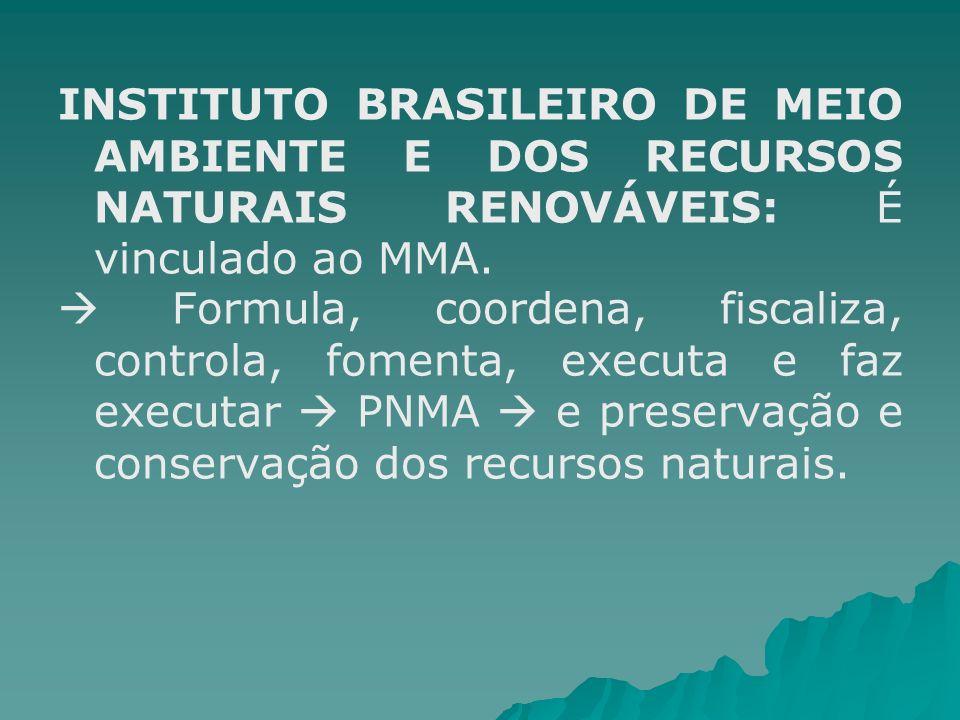 INSTITUTO BRASILEIRO DE MEIO AMBIENTE E DOS RECURSOS NATURAIS RENOVÁVEIS: É vinculado ao MMA.