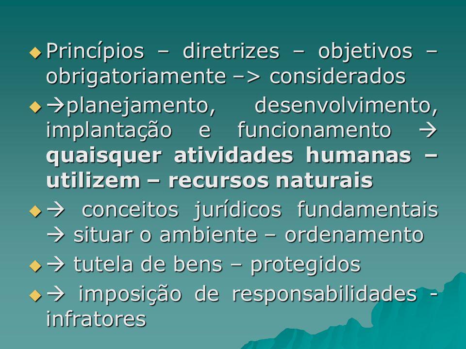 Princípios – diretrizes – objetivos – obrigatoriamente –> considerados