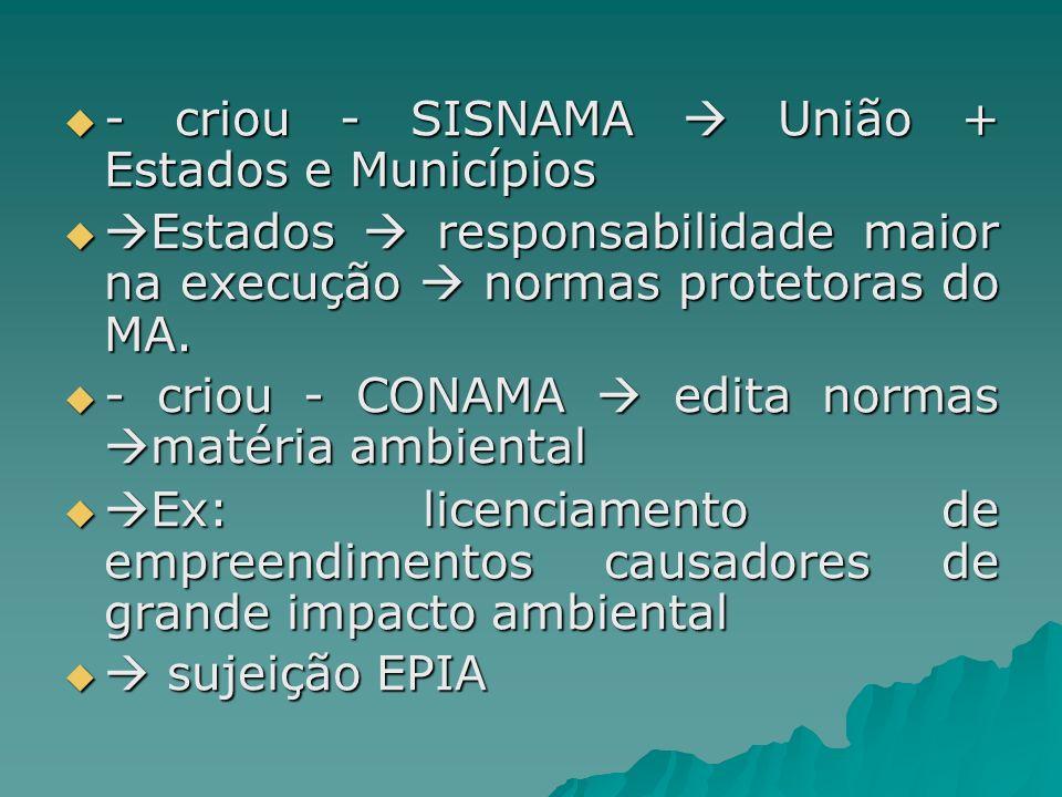 - criou - SISNAMA  União + Estados e Municípios