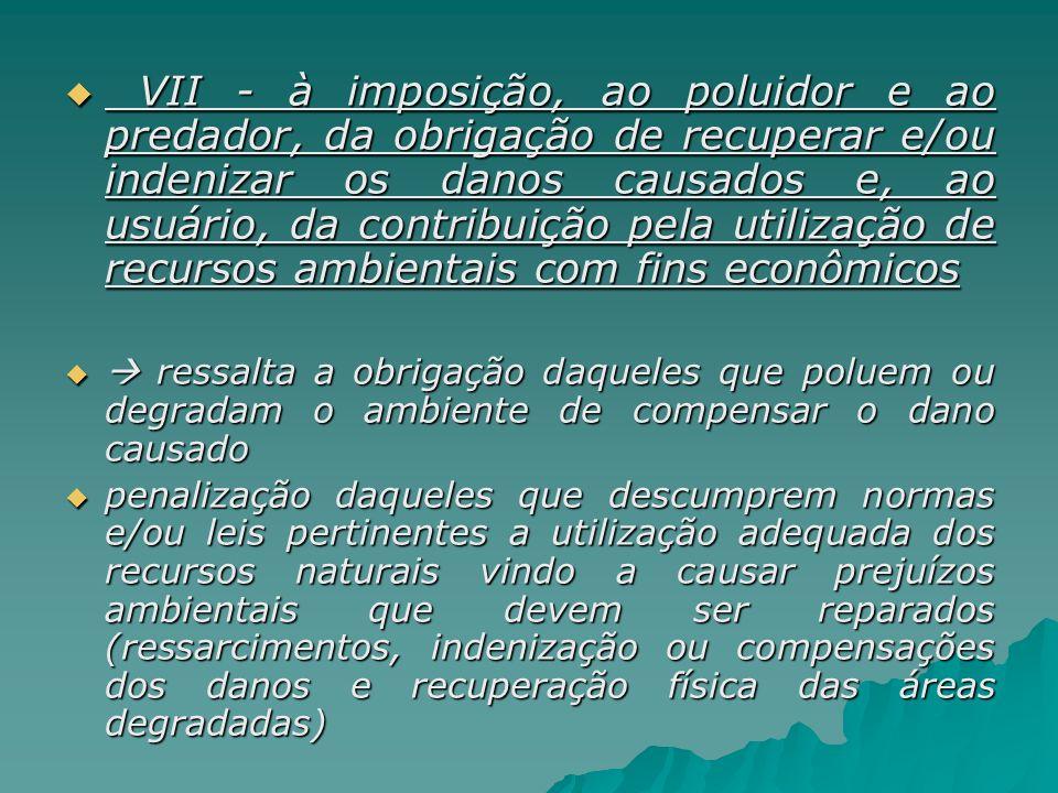 VII - à imposição, ao poluidor e ao predador, da obrigação de recuperar e/ou indenizar os danos causados e, ao usuário, da contribuição pela utilização de recursos ambientais com fins econômicos