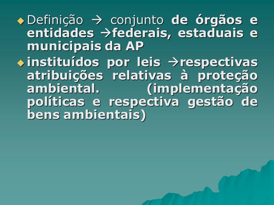 Definição  conjunto de órgãos e entidades federais, estaduais e municipais da AP