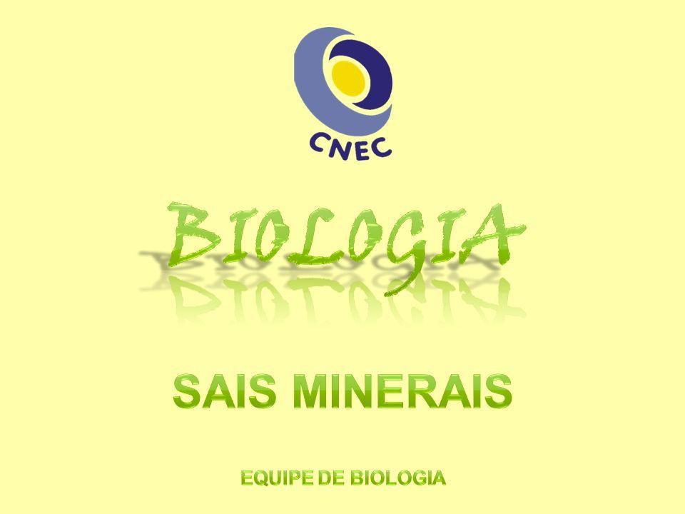 Biologia Sais Minerais Equipe de biologia