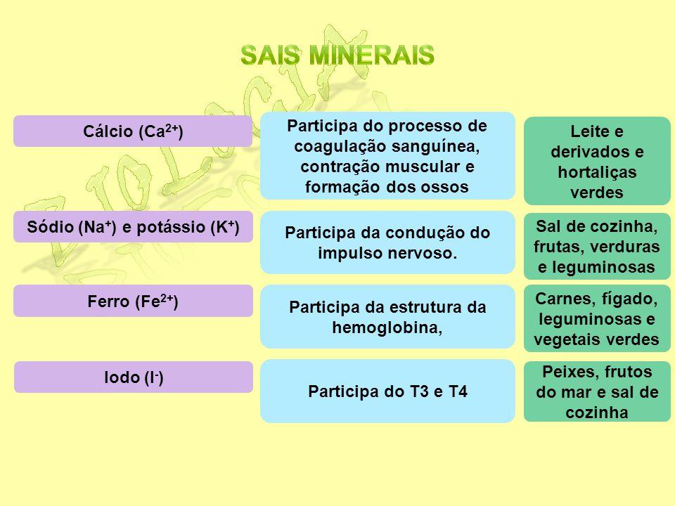Biologia Sais minerais