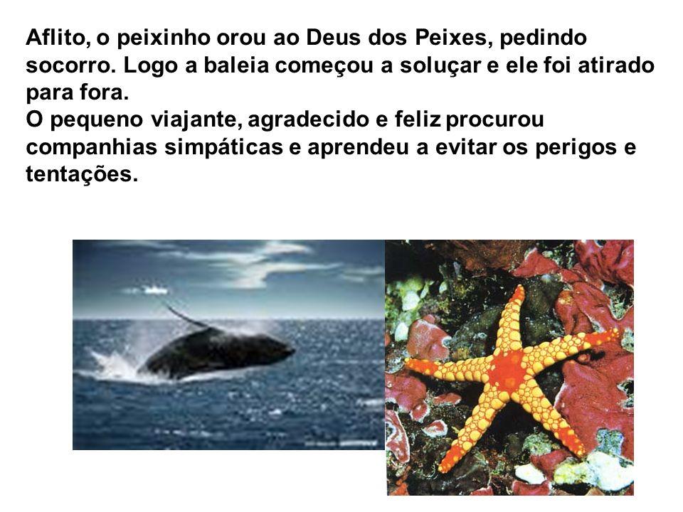 Aflito, o peixinho orou ao Deus dos Peixes, pedindo socorro