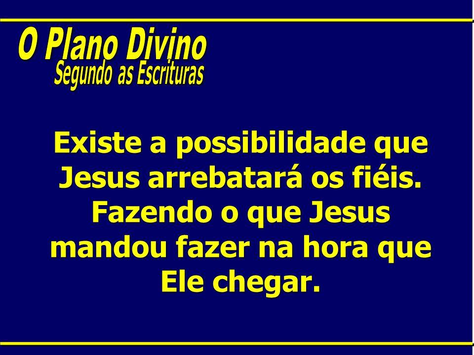 O Plano DivinoSegundo as Escrituras.Existe a possibilidade que Jesus arrebatará os fiéis.