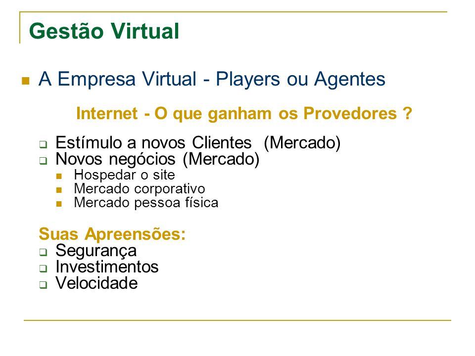 Internet - O que ganham os Provedores
