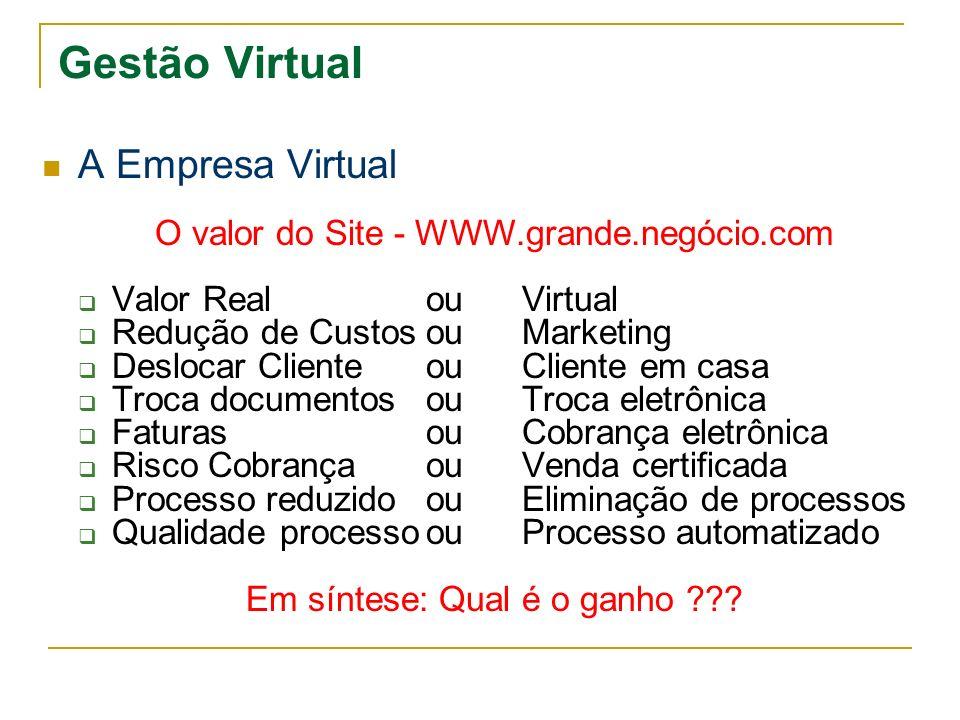 Gestão Virtual A Empresa Virtual