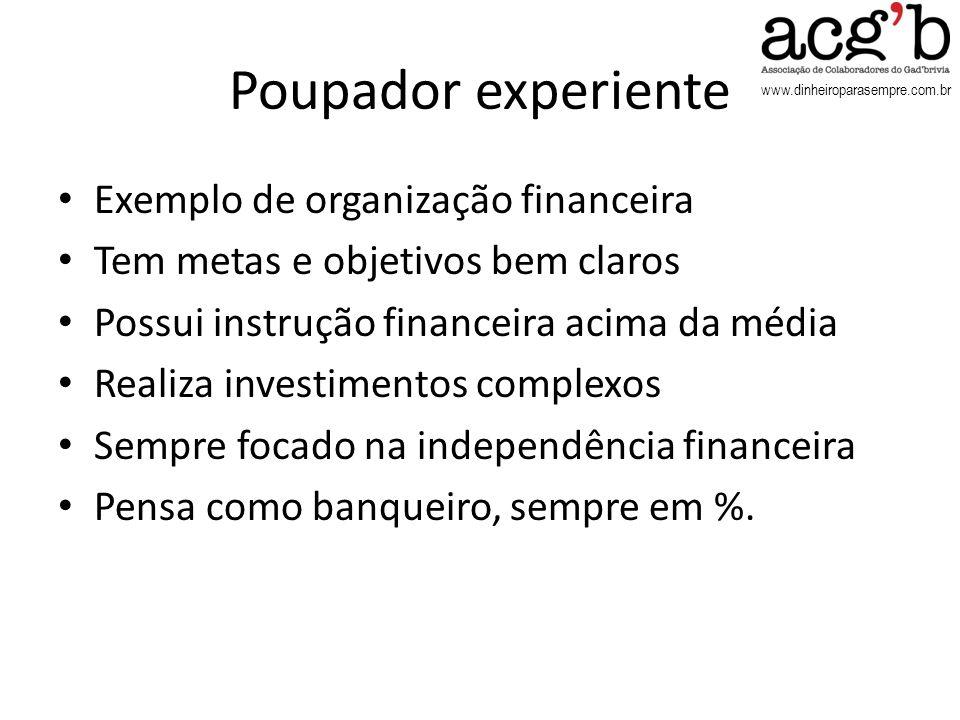 Poupador experiente Exemplo de organização financeira