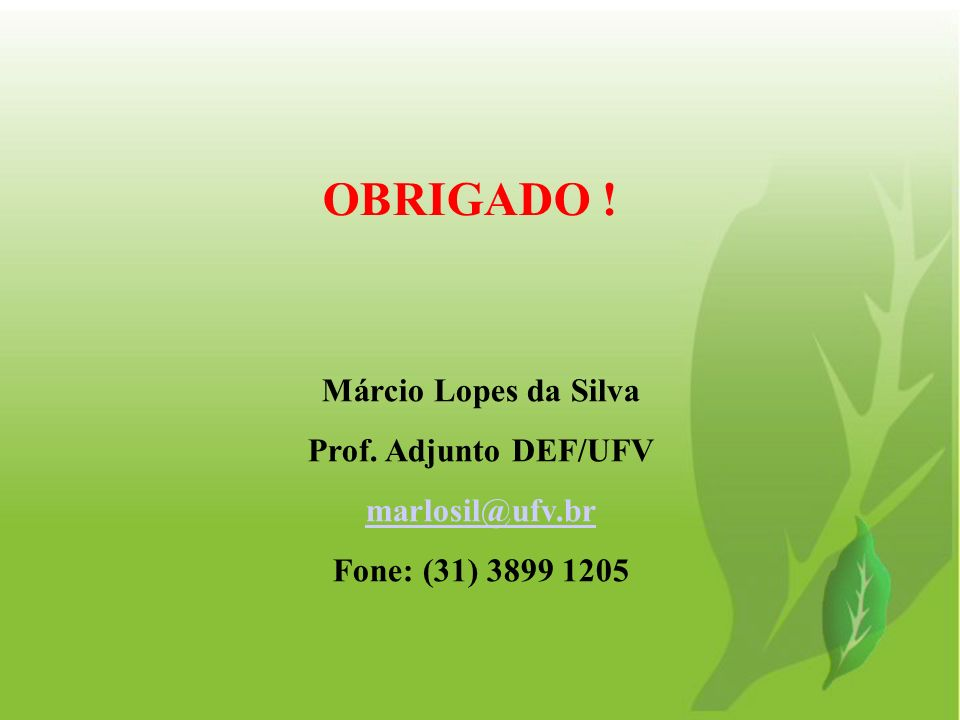 OBRIGADO ! Márcio Lopes da Silva Prof. Adjunto DEF/UFV marlosil@ufv.br
