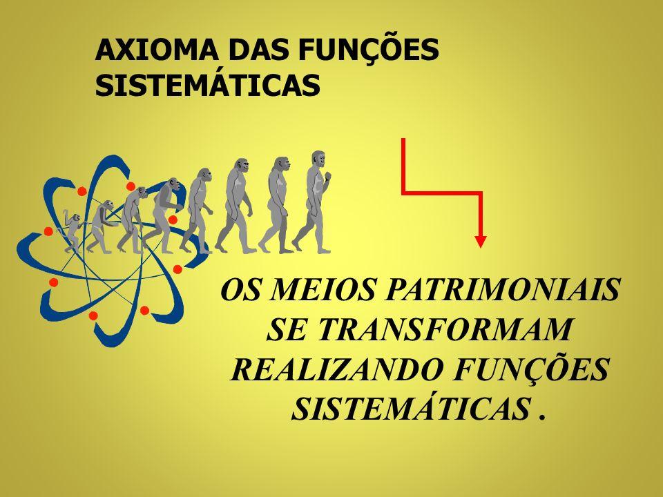 OS MEIOS PATRIMONIAIS SE TRANSFORMAM REALIZANDO FUNÇÕES SISTEMÁTICAS .