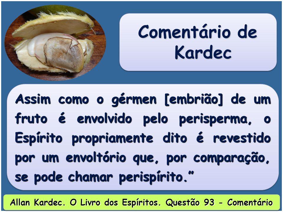 Allan Kardec. O Livro dos Espíritos. Questão 93 - Comentário