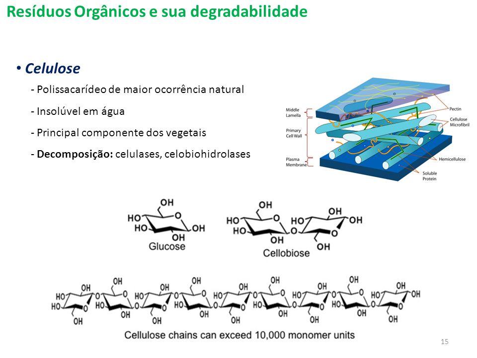 Resíduos Orgânicos e sua degradabilidade