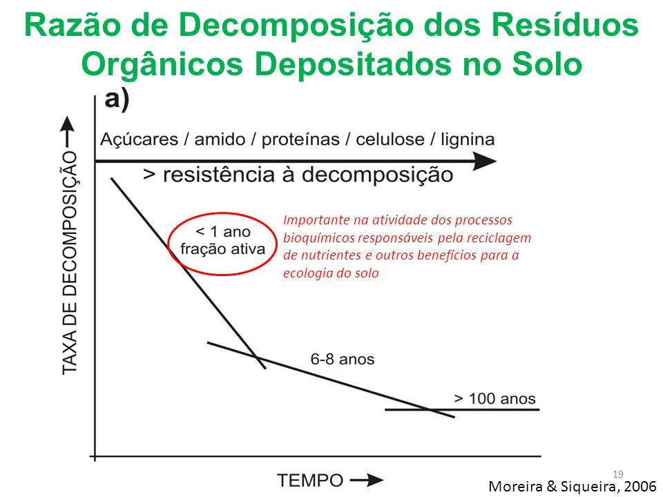 Razão de Decomposição dos Resíduos Orgânicos Depositados no Solo