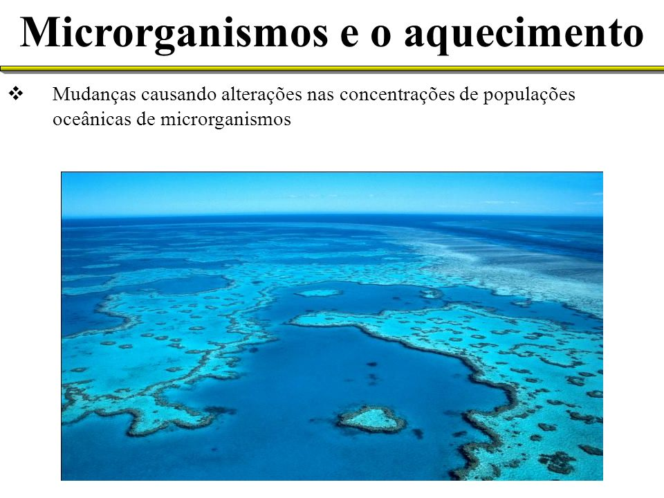 Microrganismos e o aquecimento