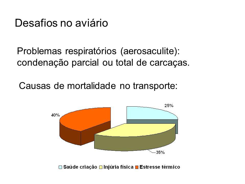 Desafios no aviário Problemas respiratórios (aerosaculite): condenação parcial ou total de carcaças.