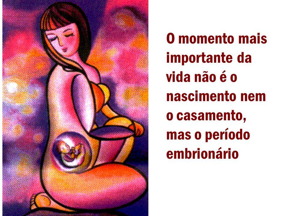 O momento mais importante da vida não é o nascimento nem o casamento, mas o período embrionário