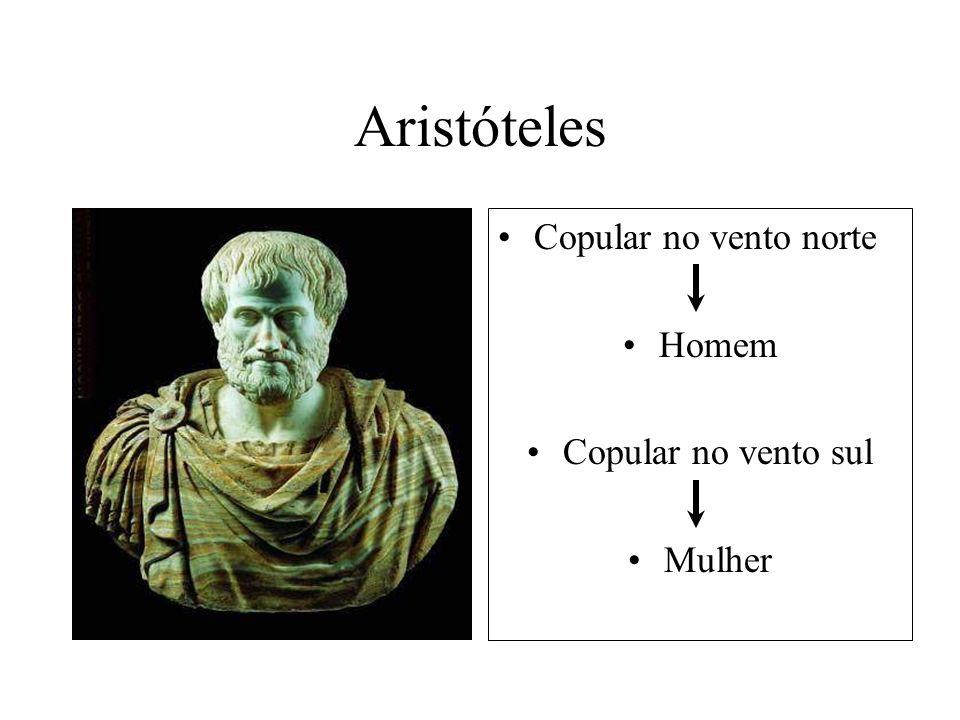 Aristóteles Copular no vento norte Homem Copular no vento sul Mulher