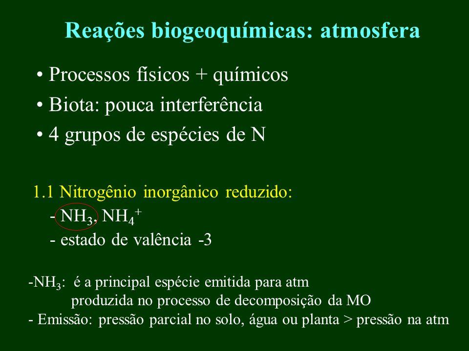 Reações biogeoquímicas: atmosfera