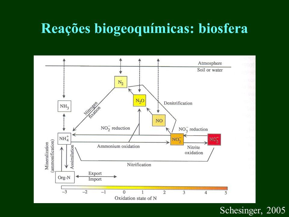Reações biogeoquímicas: biosfera