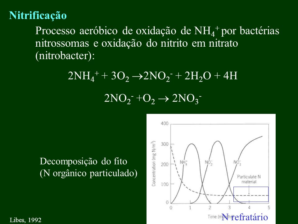 Nitrificação Processo aeróbico de oxidação de NH4+ por bactérias nitrossomas e oxidação do nitrito em nitrato (nitrobacter):