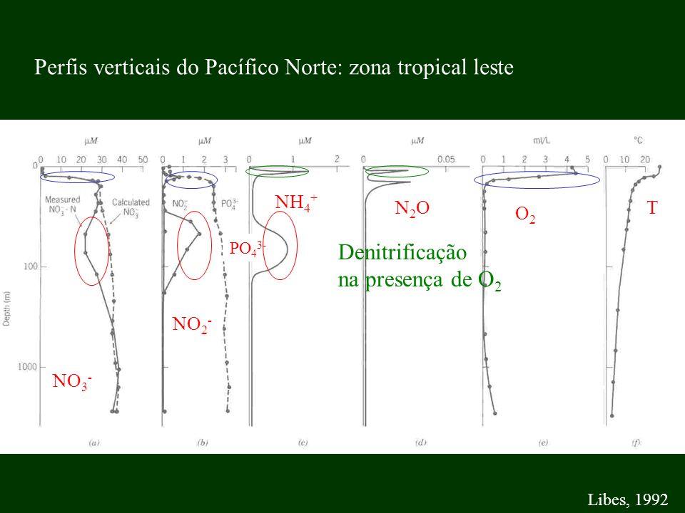 Perfis verticais do Pacífico Norte: zona tropical leste
