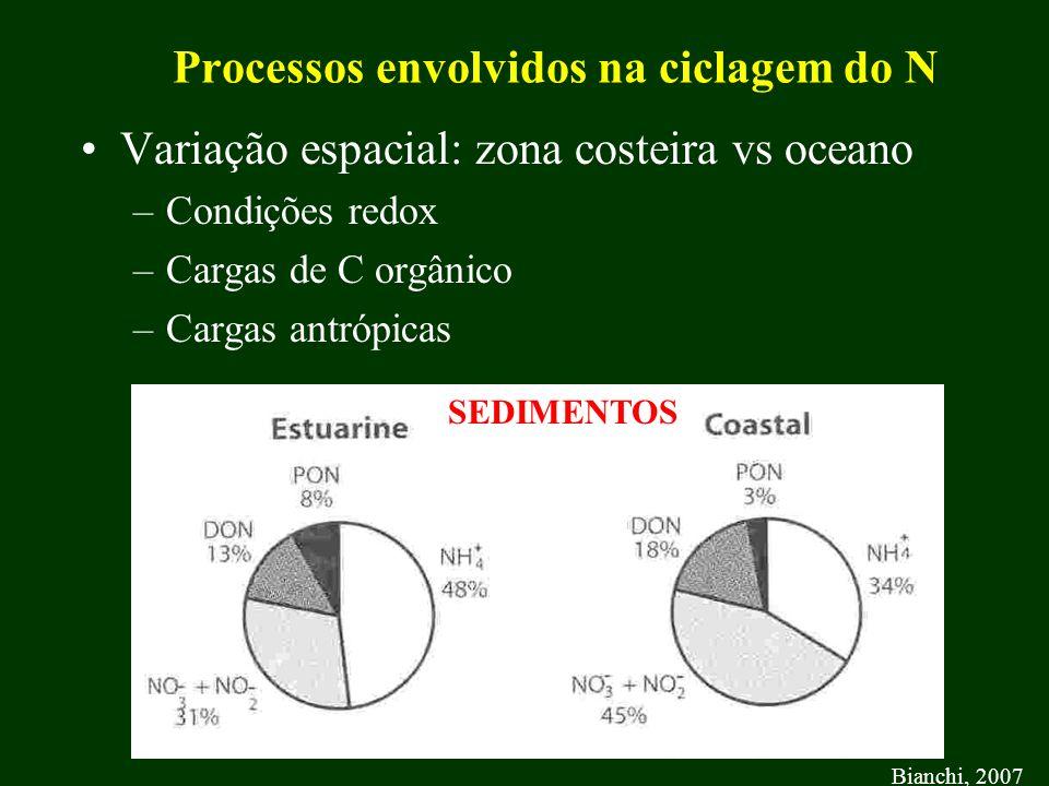Processos envolvidos na ciclagem do N