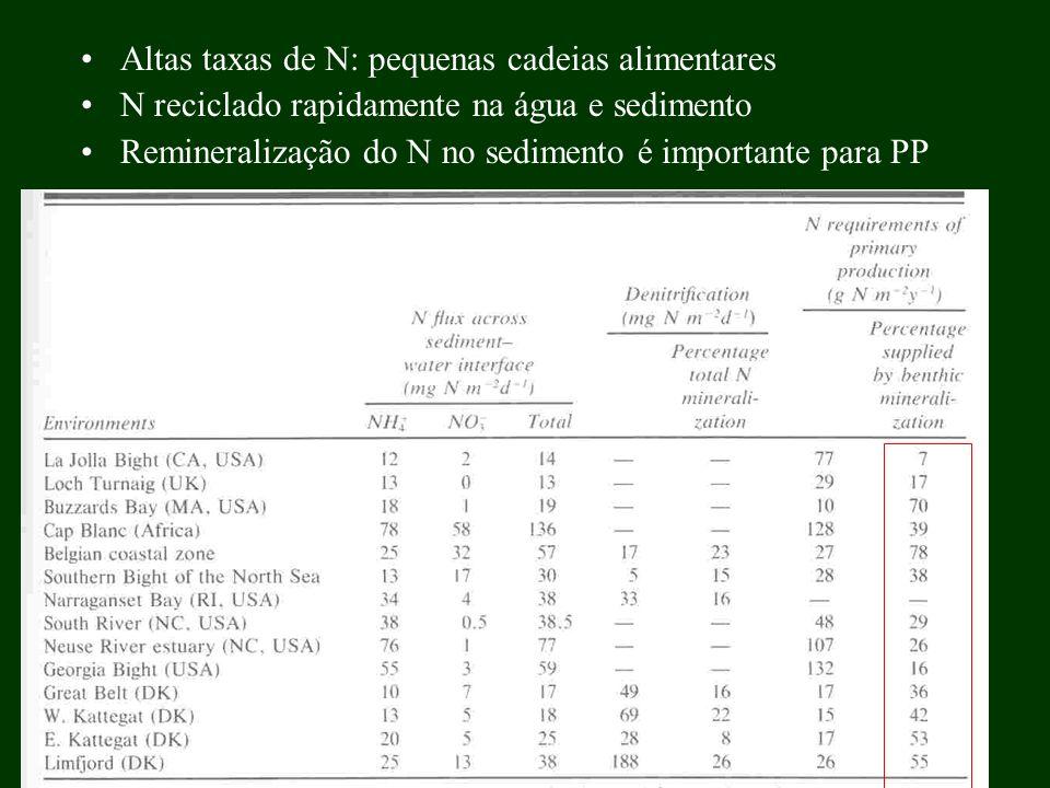Altas taxas de N: pequenas cadeias alimentares