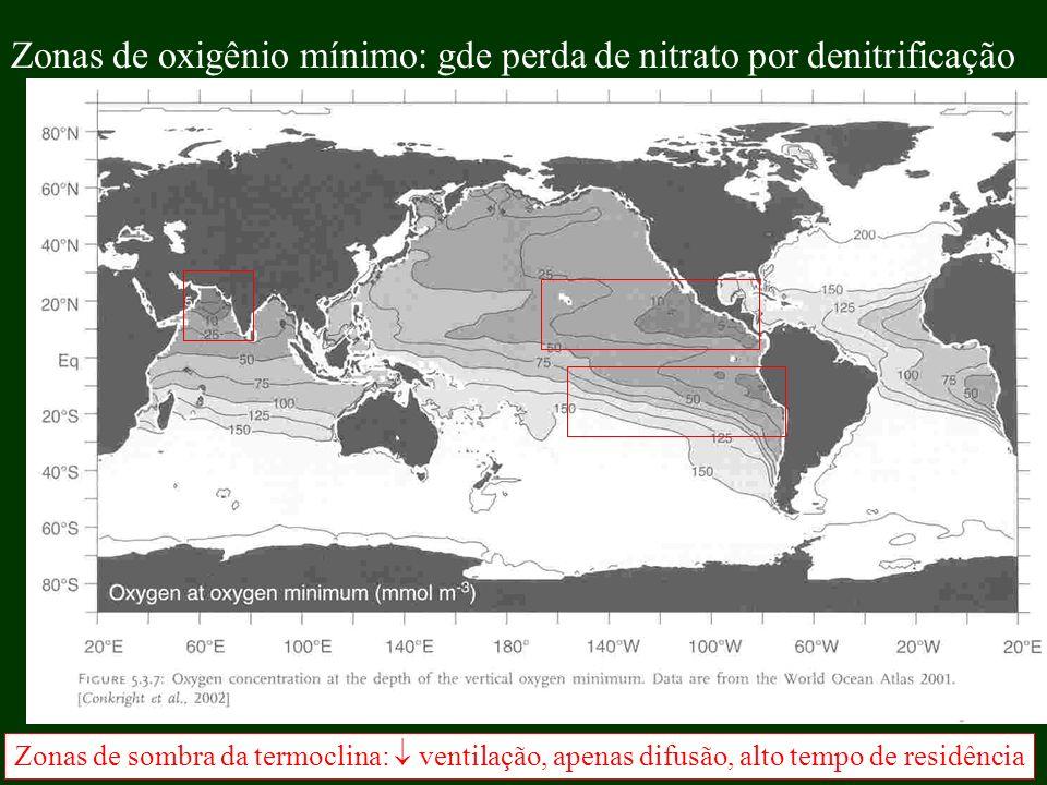 Zonas de oxigênio mínimo: gde perda de nitrato por denitrificação