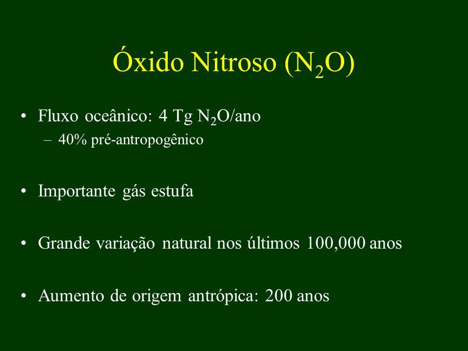 Óxido Nitroso (N2O) Fluxo oceânico: 4 Tg N2O/ano Importante gás estufa