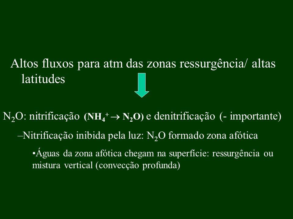 Altos fluxos para atm das zonas ressurgência/ altas latitudes