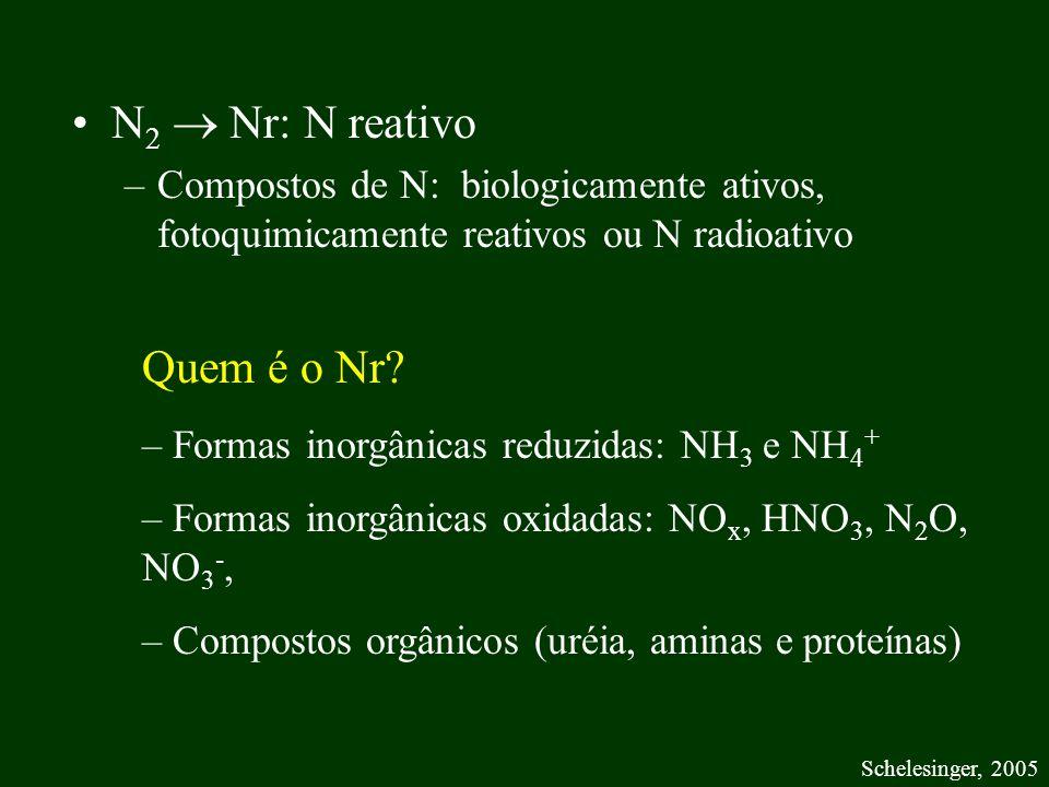 N2  Nr: N reativo Quem é o Nr