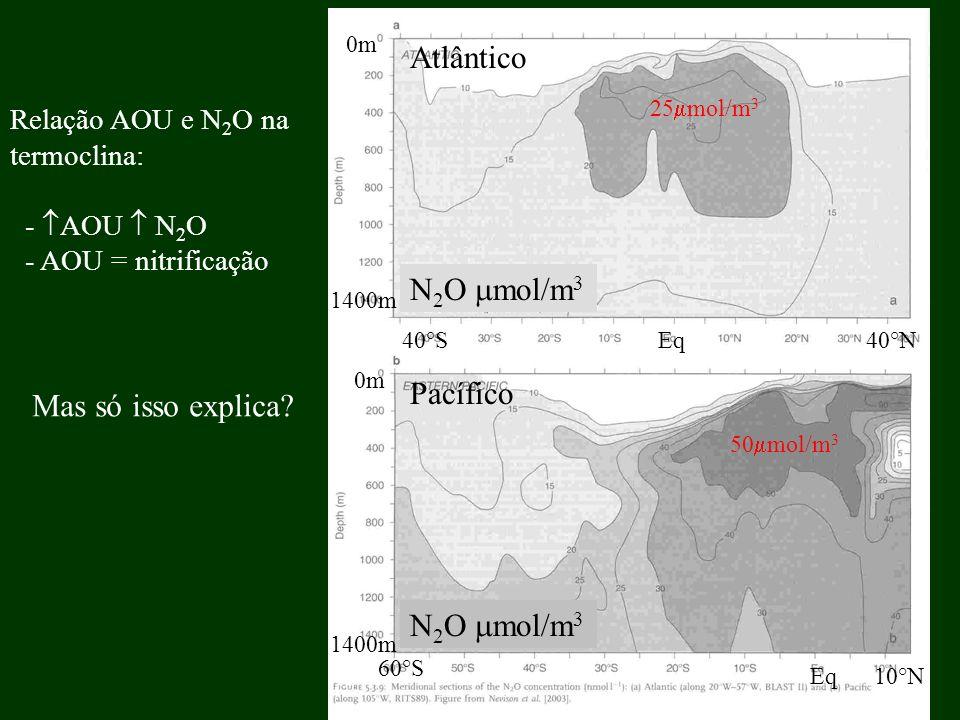 Atlântico N2O mol/m3 Pacífico Mas só isso explica N2O mol/m3