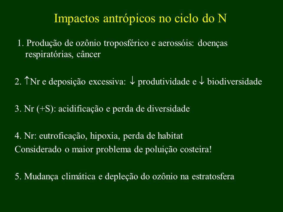 Impactos antrópicos no ciclo do N